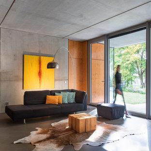 Modernes Wohnzimmer mit grauer Wandfarbe, Betonboden und grauem Boden in Düsseldorf