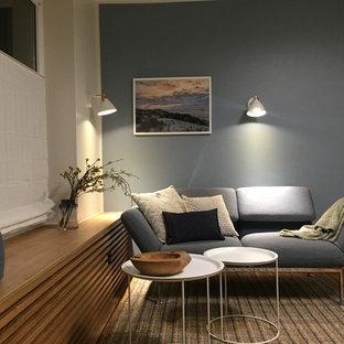 他の地域の中サイズのビーチスタイルのおしゃれなファミリールーム (青い壁、クッションフロア、茶色い床) の写真