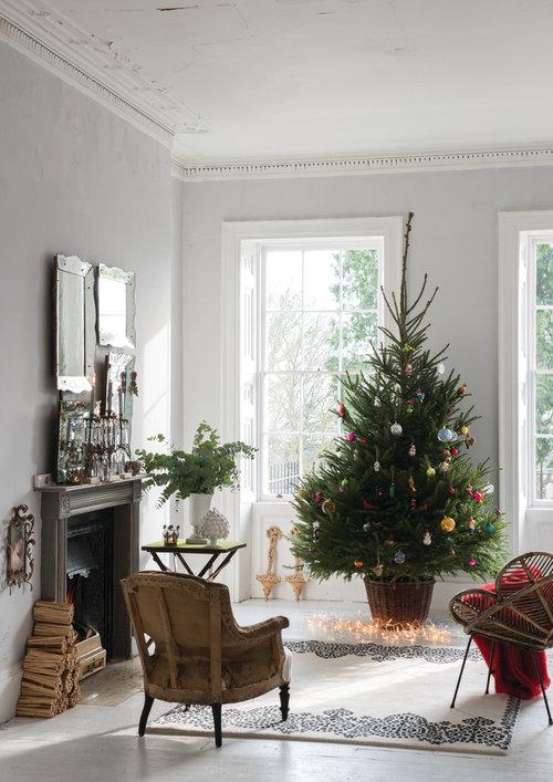Weihnachtsbaum Klein Echt.Stichwort Weihnachtsbaum Künstlich Oder Echt Groß Oder Klein