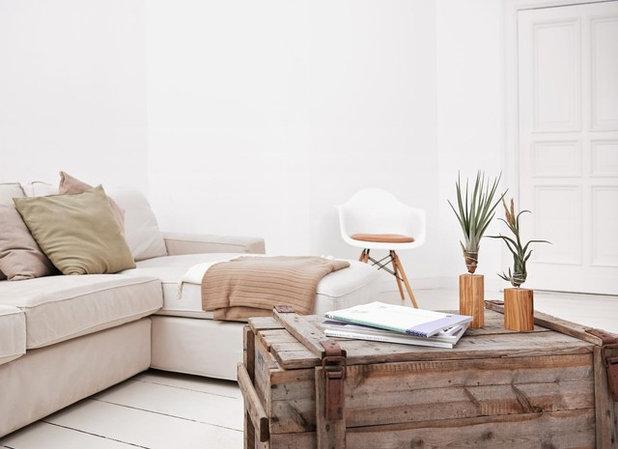 Gr n ist hip 11 moderne zimmerpflanzen for Zimmerpflanzen wohnzimmer