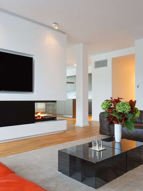 wohnzimmer mit tunnelkamin und wand tv ideen design houzz. Black Bedroom Furniture Sets. Home Design Ideas