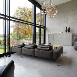 Offenes, Großes Modernes Wohnzimmer mit grauer Wandfarbe und Betonboden in Sonstige