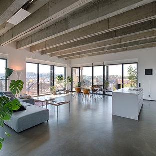 Geräumiges, Repräsentatives Industrial Wohnzimmer im Loft-Stil mit Betonboden, grauem Boden und weißer Wandfarbe in Sonstige