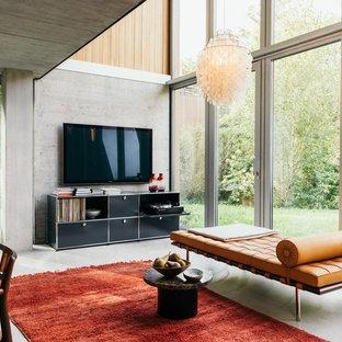 Foto di un soggiorno contemporaneo di medie dimensioni e aperto con pareti grigie, pavimento in cemento, TV a parete e pavimento grigio