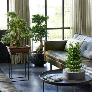 Idées déco pour une salle de séjour asiatique avec béton au sol, aucune cheminée et un sol gris.