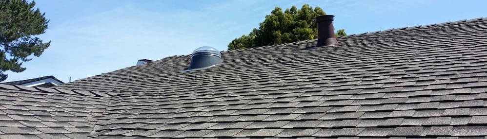 Ace Roofing Inc.   San Francisco, CA, US 94124