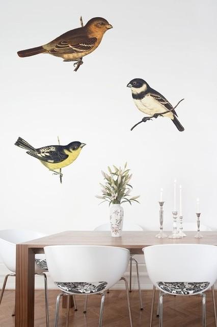 65dc1c5e04d Sparrows
