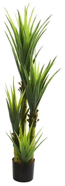 12 in. Dracaena Plant in Green