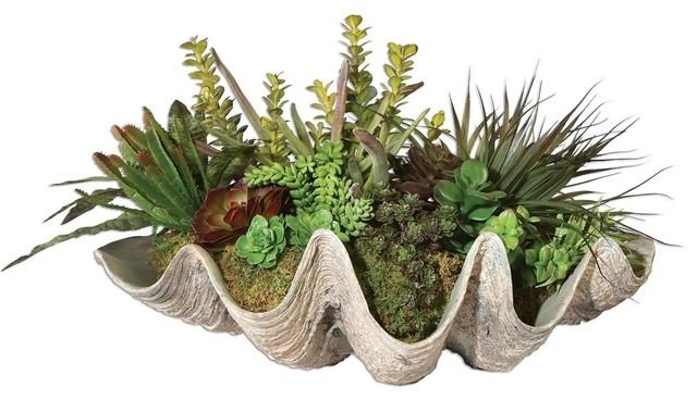 Coastal Clam Shell Faux Floral Succulent Plants