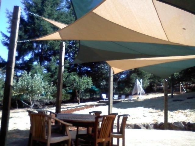 Santa Cruz Mountain Shade