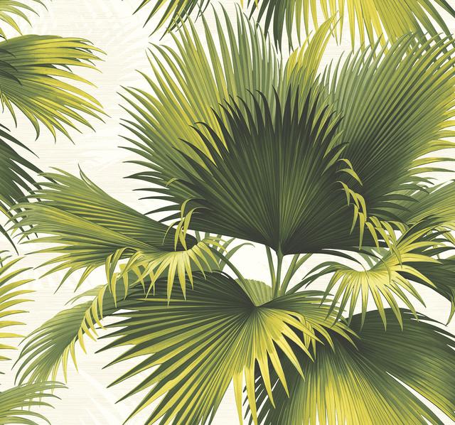 Endless Summer Green Palm Wallpaper Bolt.