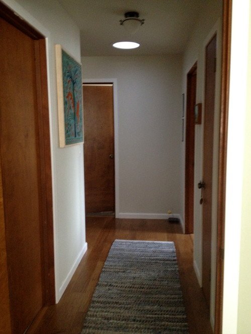 paint interior doorsInterior doors  paint white or replace with white panel door