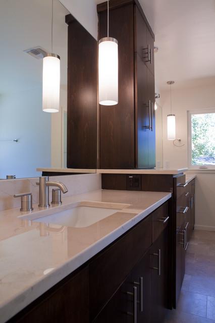 Home design - contemporary home design idea in Austin