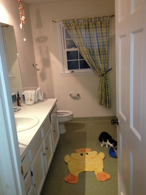 Lovely Bath Help - Incorporate Avocado Green Tile in Colorful Update TF51