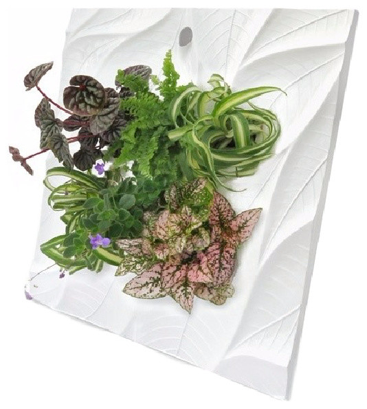 Living Wall Planter edelwhite living wall planter - contemporary - indoor pots and