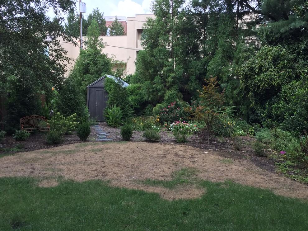 Myers Park Backyard Renovation