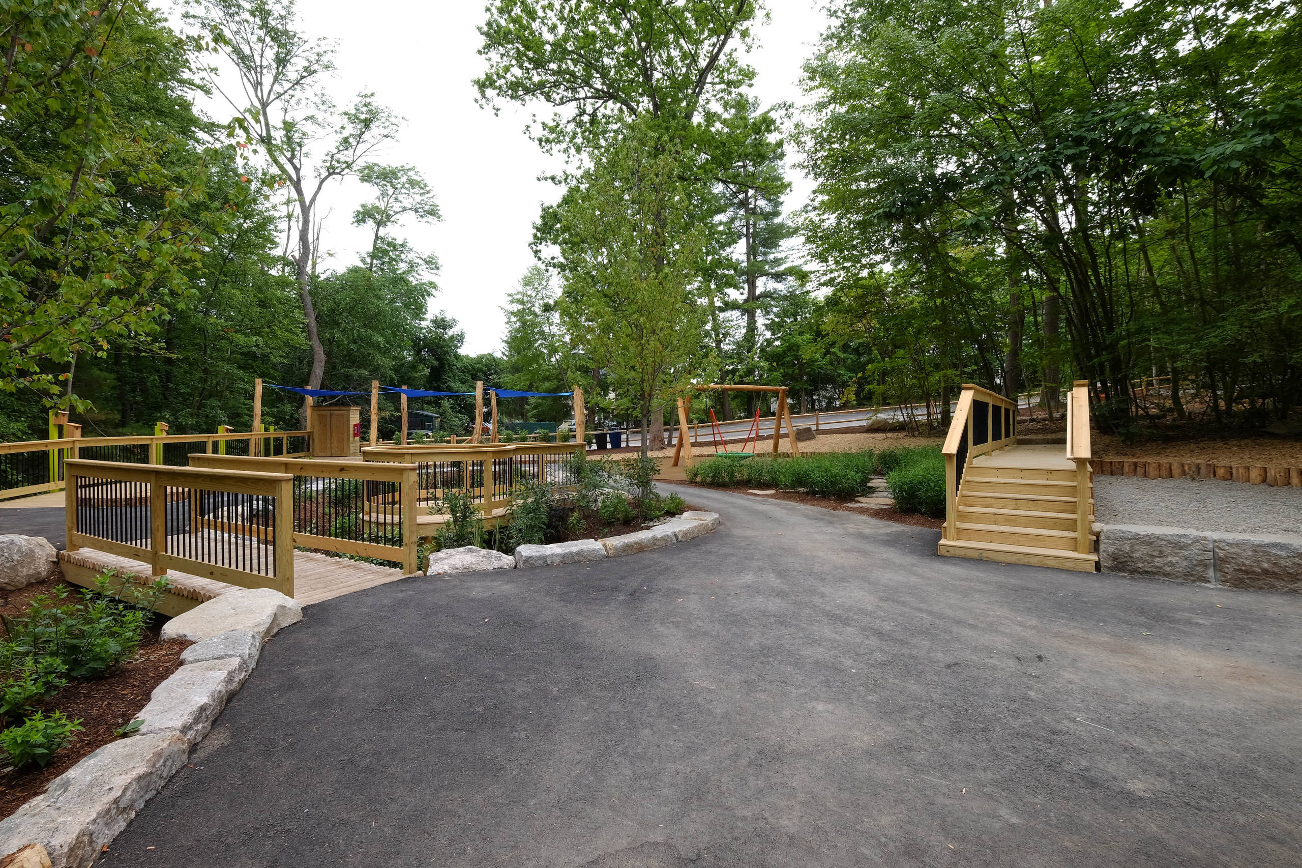 Discovery Woods