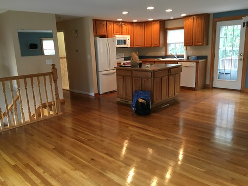 Help Design For Open Concept Raised Ranch