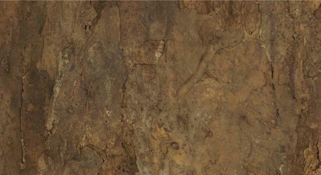 Contemporary Wall Tile jelinek cork wall tiles, set of 2, natural arizona cork belly
