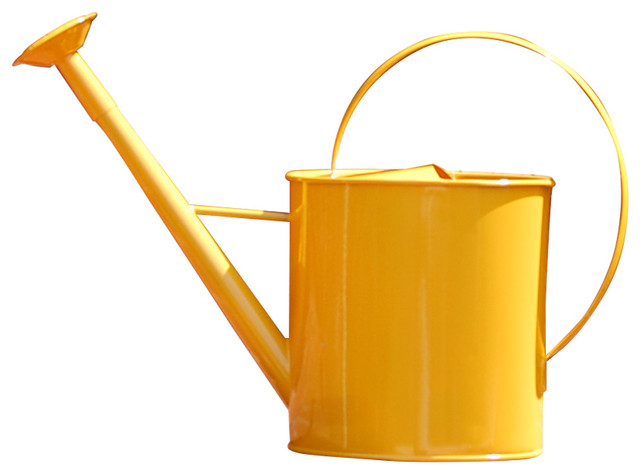 Austram metal 1 gallon watering can with long spout view in your room houzz - Gallon metal watering can ...