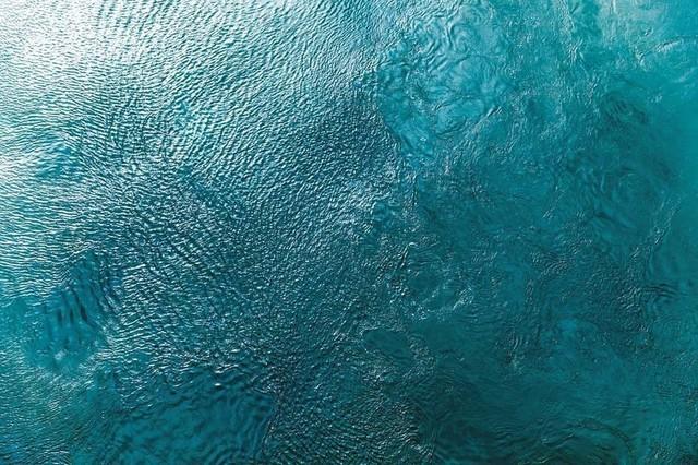 "Water Texture Two Birds Eye Fine Art Giant Canvas Print 72""x48""."