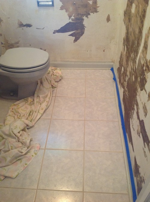 need bathroom wall color to match blue floor tile sink toilet please