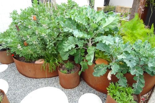 Nem kertelünk! Mutatjuk a legszemrevalóbb virágágyásokat!