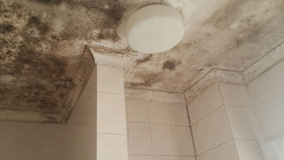 Bathroom Mould (Mold, Mildew) Removal