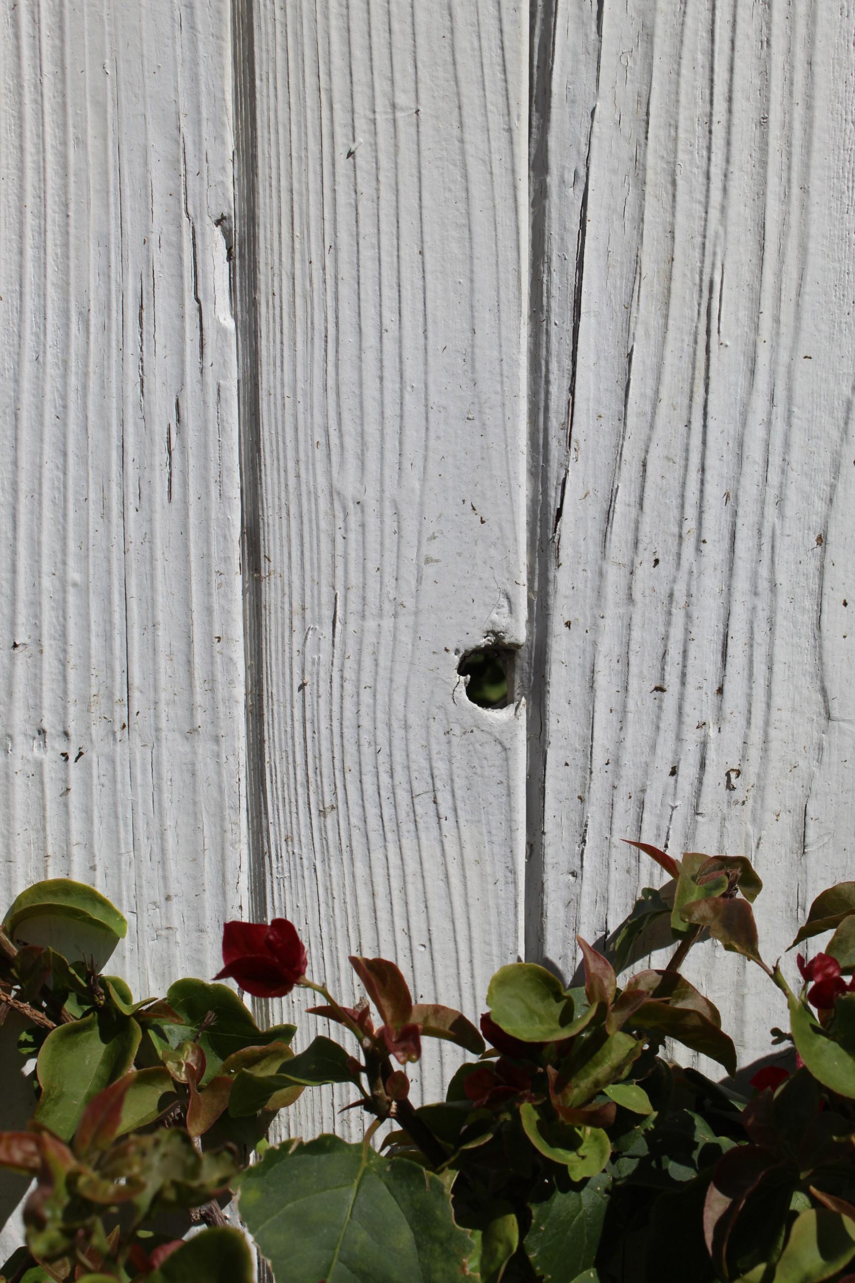 Mesa Verde, Costa Mesa, CA