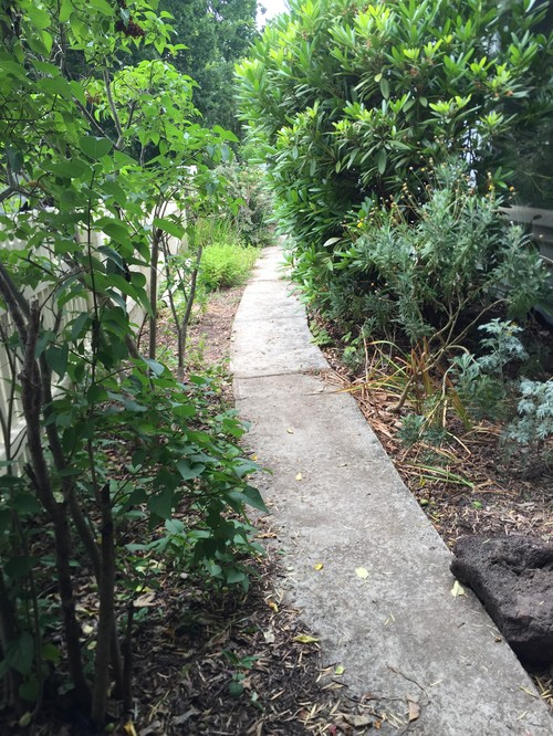 Need help with my garden for Help design my garden