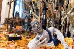 Die Rocky Horror Puppen Show – Halloween in einem Gothic-Apartment