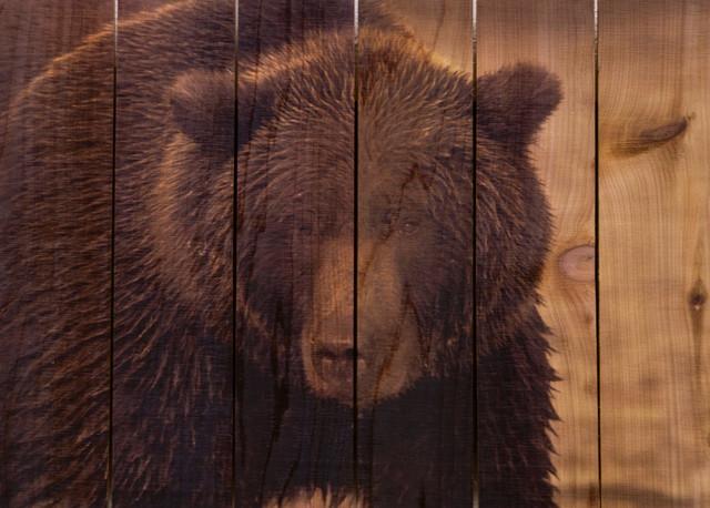 "Big Bear Full Color Cedar Indoor And Outdoor Wall Art, 33""x24""."