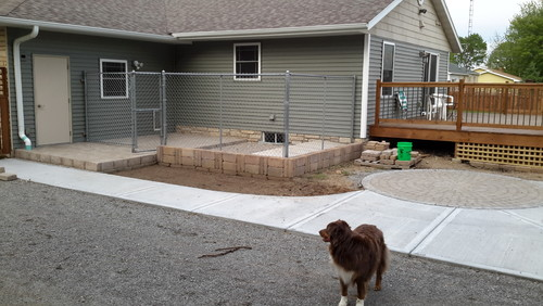 Need dog friendly shrub ideas to disguise dog kennel!
