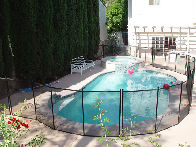 Swimming Pool Fencing Ideas Modern