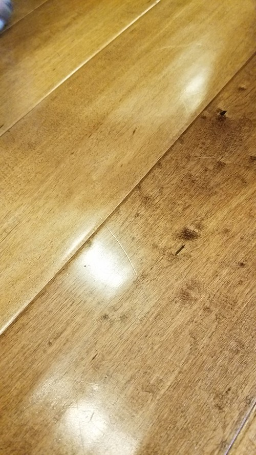 Engineered Flooring With Finish Scratches From Dogs Help