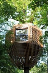 Come Costruire una Spettacolare Casa sull'Albero