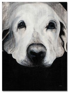Dakota II Poster Print by Patsy Ducklow 24 x 24