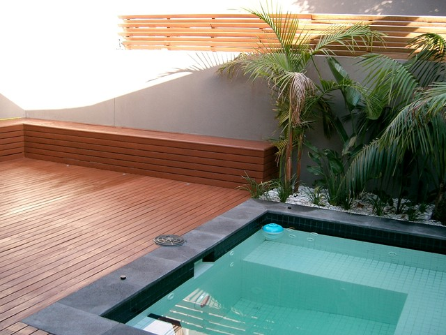 Plunge pool in small courtyard tropical melbourne by for Small pools melbourne
