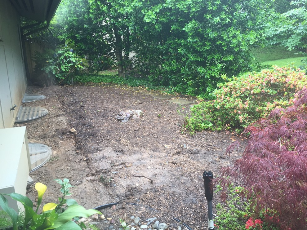 BEFORE Contemporary foundation planting