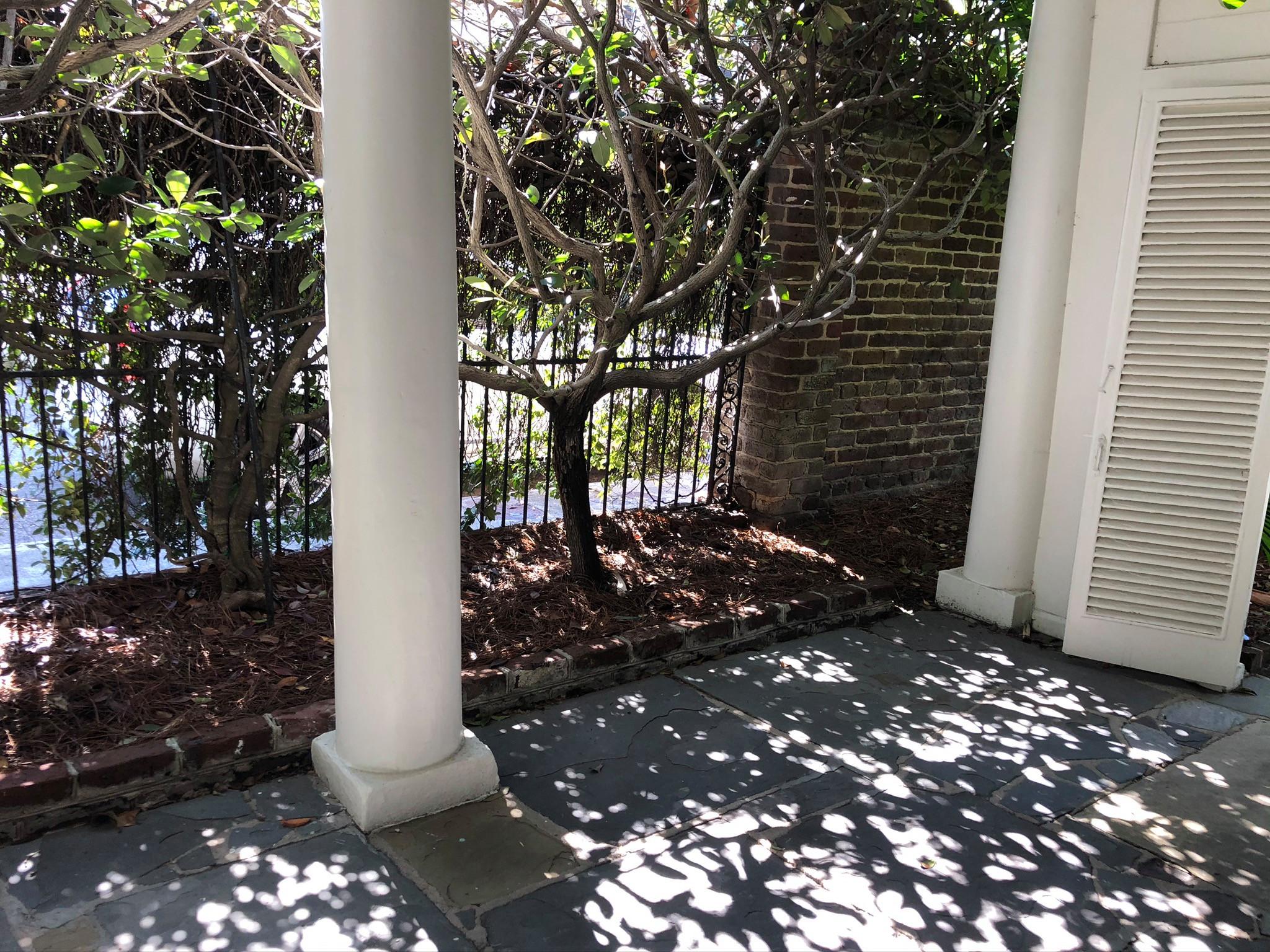 Elegant Southern Garden