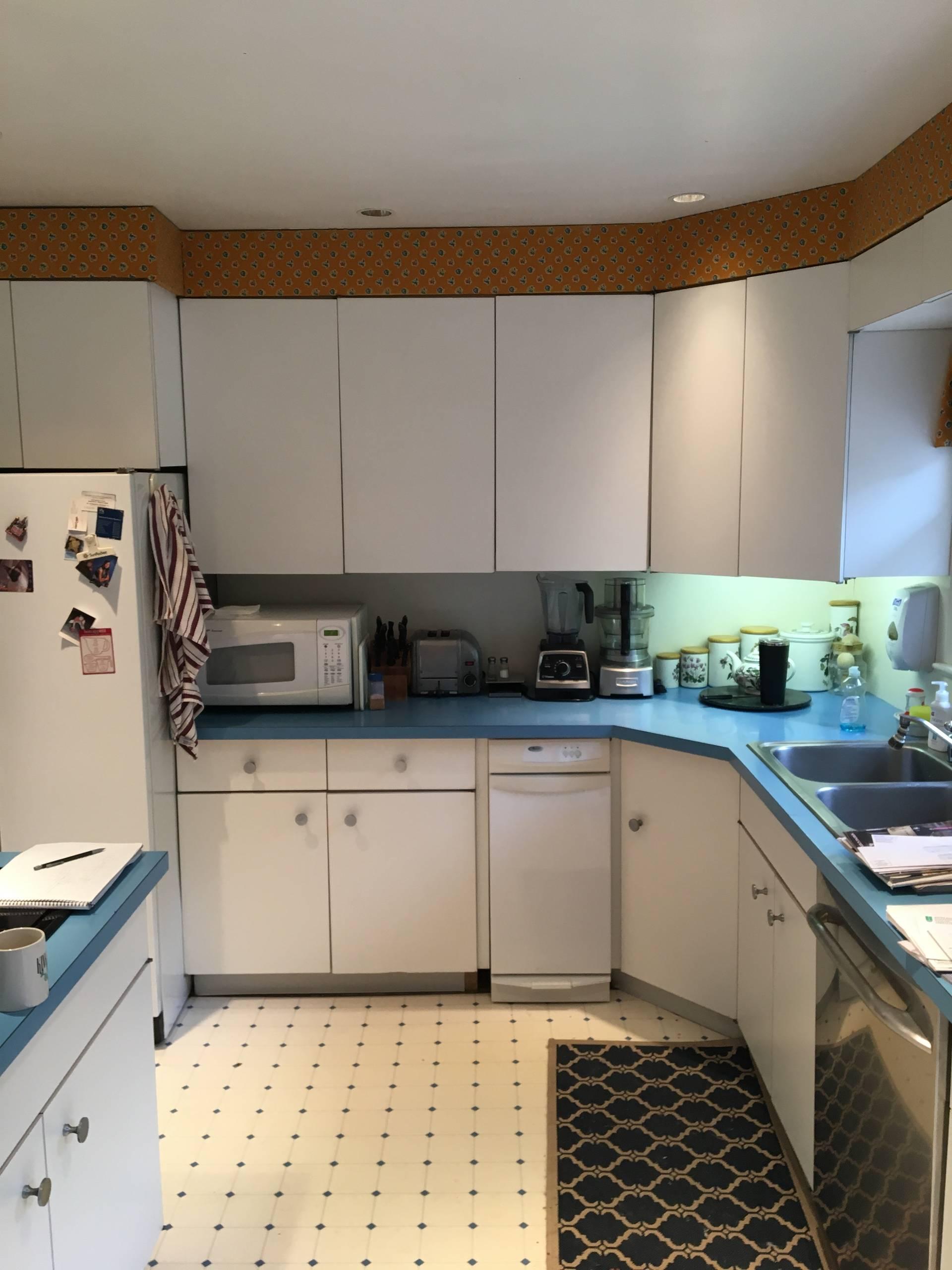 Alexandria Transitional Kitchen: Before