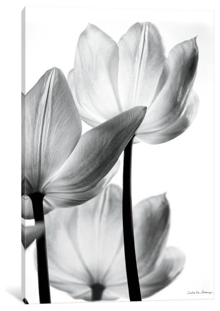 """""""translucent Tulips Iii"""" By Debra Von Swearingen, 18x12x.75."""