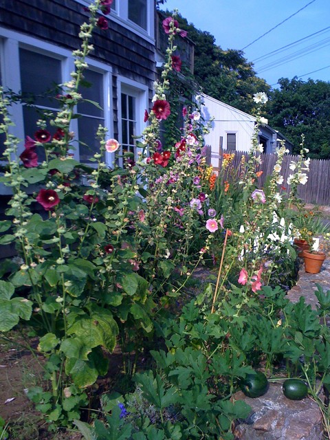Cottage gardens new england for Home garden design houzz