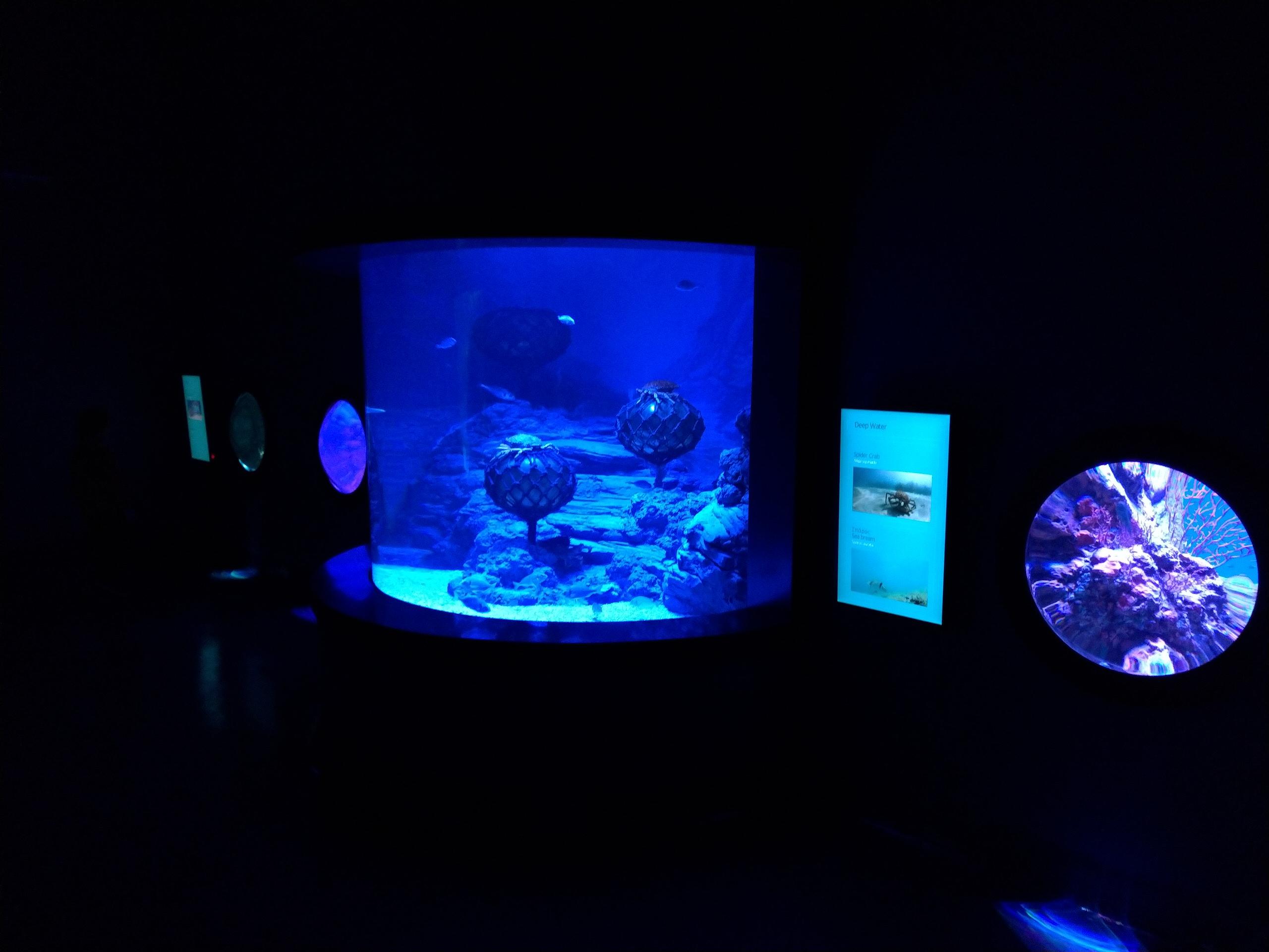Goldenhall Aquarium - Athens, Greece