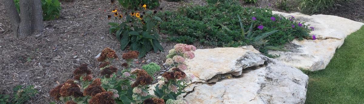 Star Of Texas Landscape   McKinney, TX, US 75071