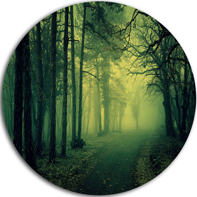 Green Light In Thick Mist Forest Landscape Photo Round