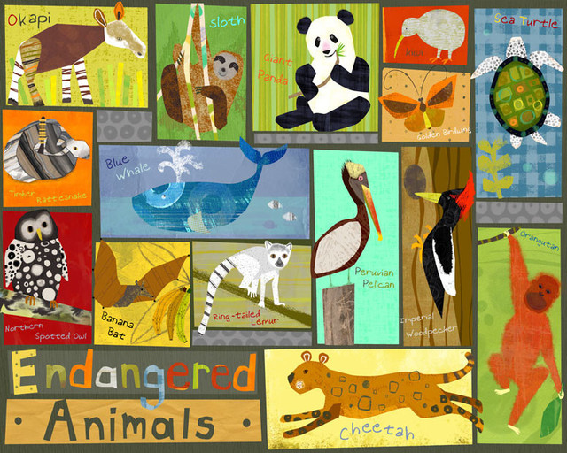 Endangered Animals Canvas Wall Art Contemporary Kids Wall Decor By Oopsy Daisy Fine Art For Kids