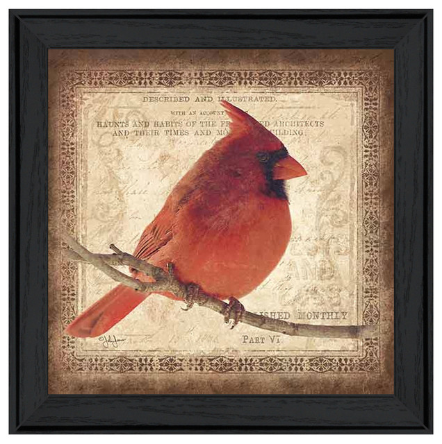 Framed Male Cardinal Print - Traditional - Prints And Posters - by TrendyDecor4U