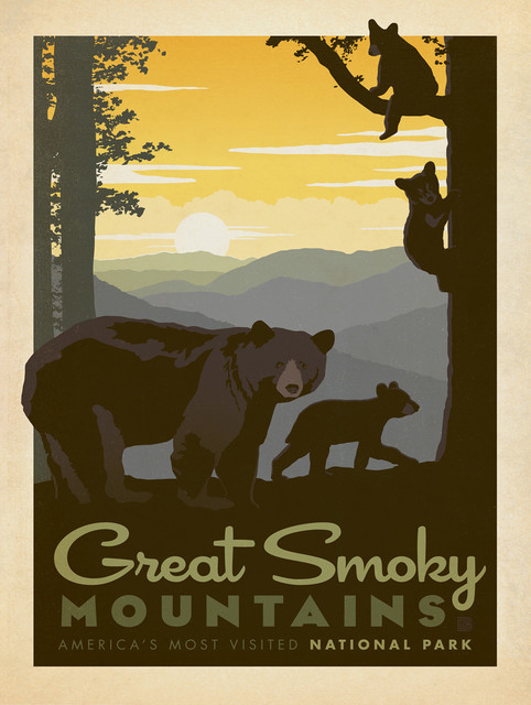 Art & Soul Of America: Great Smoky Mountains Cubs Gallery Print.