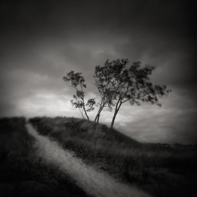Contemporary art photography,  landscape, nature photos